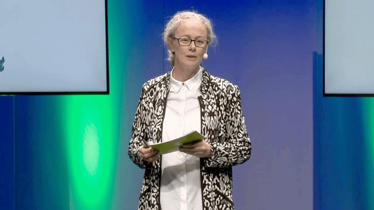 Miljöläget i Helsingborg – konferens den 7 maj 2020